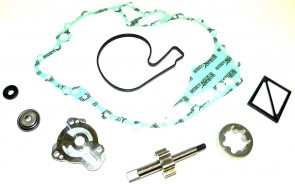 WSM Oil Pump Kit: Sea-Doo 1503 4-Tec Primary (Rear)